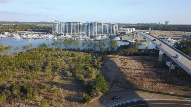 0 Baldwin Beach Express, Orange Beach, AL 36561 (MLS #265716) :: Ashurst & Niemeyer Real Estate
