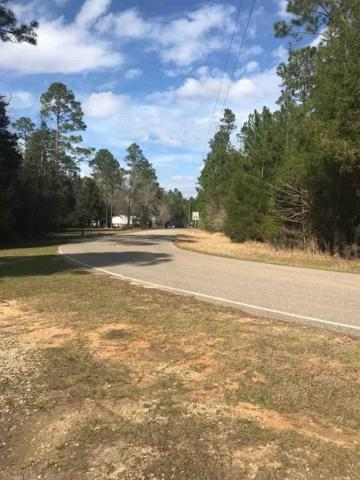 0 Goat Cooper Road, Robertsdale, AL 36567 (MLS #265793) :: Gulf Coast Experts Real Estate Team