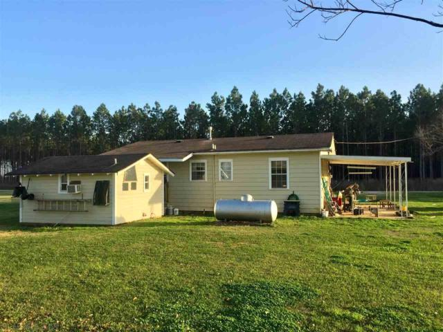 21631 County Road 48, Robertsdale, AL 36567 (MLS #265863) :: Gulf Coast Experts Real Estate Team