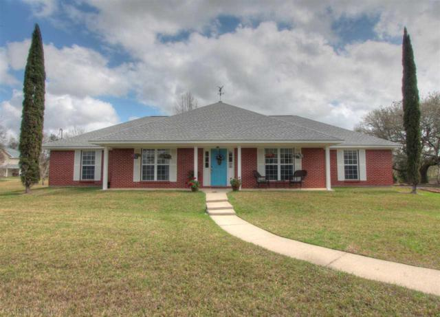 20690 Blueberry Lane, Fairhope, AL 36532 (MLS #265898) :: Ashurst & Niemeyer Real Estate
