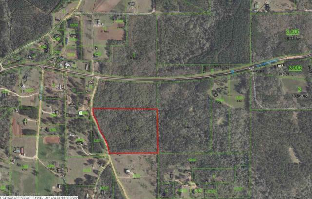 0 Bayles Road, Monroeville, AL 36460 (MLS #265906) :: Elite Real Estate Solutions
