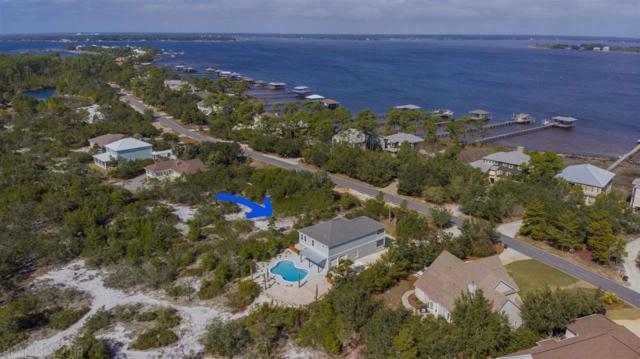 31548 Dolphin Drive, Orange Beach, AL 36561 (MLS #265922) :: The Premiere Team