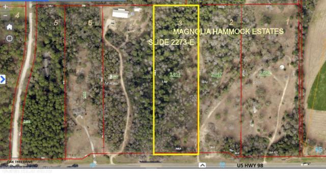 13485 Us Highway 98, Magnolia Springs, AL 36535 (MLS #266360) :: Elite Real Estate Solutions