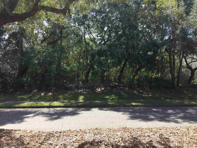 308 Peninsula Blvd, Gulf Shores, AL 36542 (MLS #266562) :: Gulf Coast Experts Real Estate Team