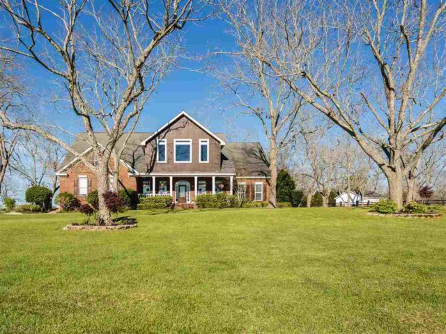 12985 Saddlebrook Circle, Fairhope, AL 36532 (MLS #266638) :: Gulf Coast Experts Real Estate Team