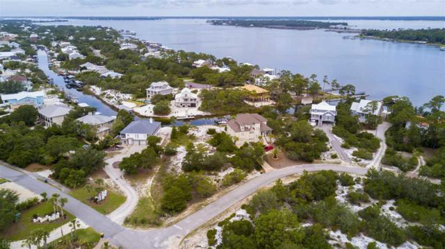 0 River Road, Orange Beach, AL 36561 (MLS #266899) :: Jason Will Real Estate