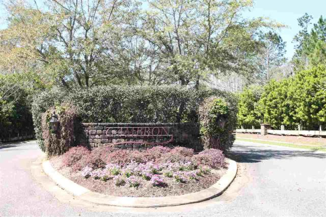 0 Wildflower Trail, Spanish Fort, AL 36527 (MLS #266976) :: Gulf Coast Experts Real Estate Team
