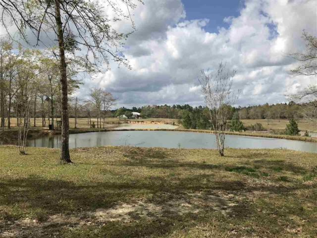 20850 River Road, Robertsdale, AL 36567 (MLS #267515) :: The Premiere Team