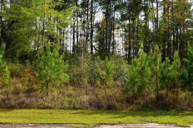 0 Delta Woods Drive, Bay Minette, AL 36507 (MLS #267716) :: Gulf Coast Experts Real Estate Team
