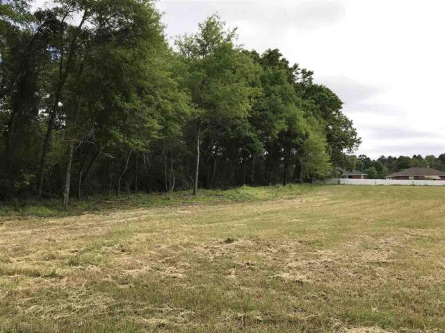 3000 Block Us Highway 31, Atmore, AL 36502 (MLS #268353) :: ResortQuest Real Estate