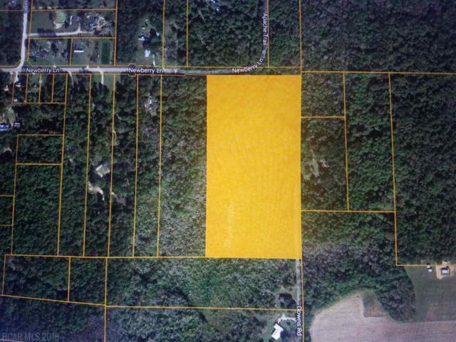 0 Newberry Ln, Bon Secour, AL 36535 (MLS #268374) :: Gulf Coast Experts Real Estate Team