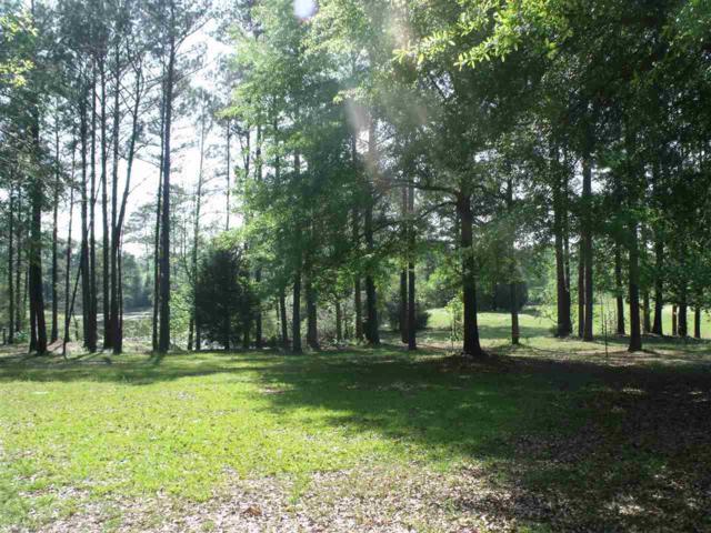 0 Misty Lane, Brewton, AL 36426 (MLS #268434) :: Gulf Coast Experts Real Estate Team