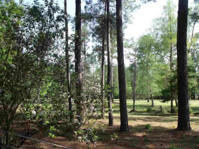 0 Misty Lane, Brewton, AL 36426 (MLS #268437) :: Gulf Coast Experts Real Estate Team
