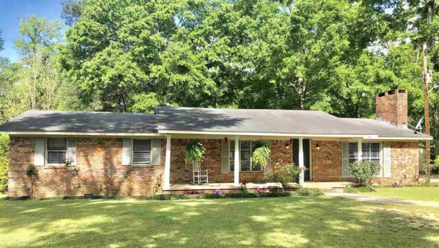 45775 Old Carney Rd, Bay Minette, AL 36507 (MLS #268581) :: The Premiere Team