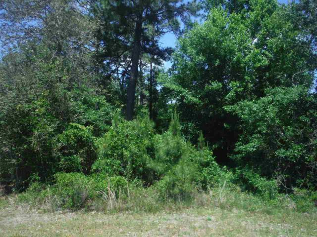 0 County Road 99, Lillian, AL 36549 (MLS #268830) :: Gulf Coast Experts Real Estate Team
