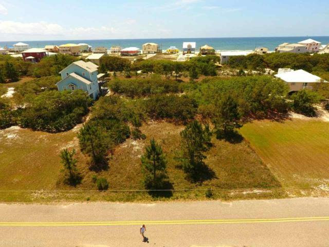 Driftwood Dr, Gulf Shores, AL 36542 (MLS #269291) :: Elite Real Estate Solutions