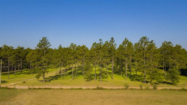 28685 Rose Run Rd, Robertsdale, AL 36567 (MLS #269721) :: Elite Real Estate Solutions