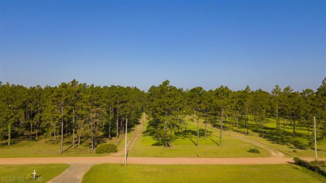 28645 Rose Run Rd, Robertsdale, AL 36567 (MLS #269724) :: Elite Real Estate Solutions