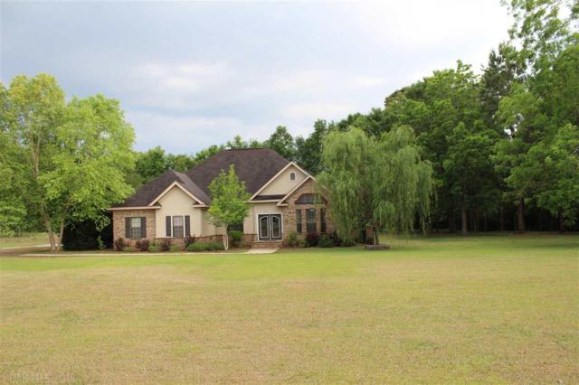 11046 Whitehouse Fork Road, Bay Minette, AL 36567 (MLS #269793) :: Elite Real Estate Solutions