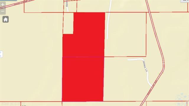 0 Burnt Car Road, Stockton, AL 36579 (MLS #269947) :: Gulf Coast Experts Real Estate Team