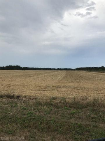 0000 Cc Road, Elberta, AL 36530 (MLS #269963) :: Karen Rose Real Estate