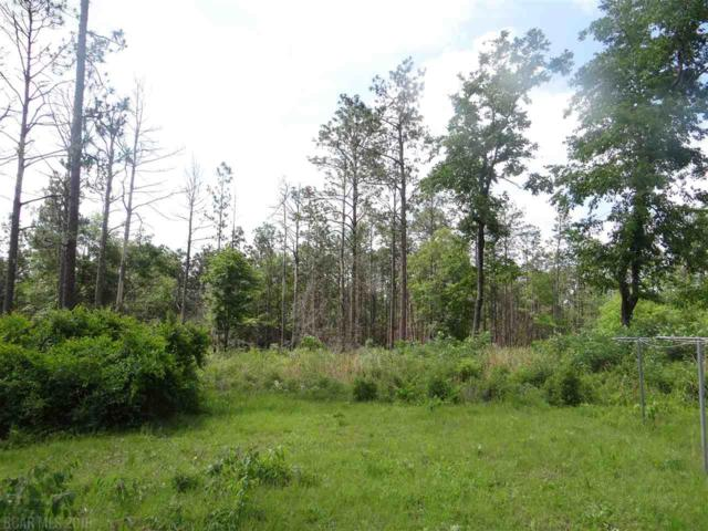39800 Mary Grice Rd, Bay Minette, AL 36507 (MLS #270050) :: Elite Real Estate Solutions