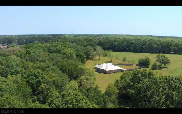 16150 Beasley Road, Foley, AL 36535 (MLS #270152) :: The Premiere Team