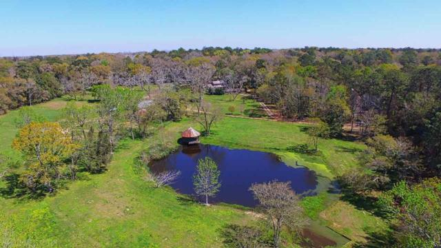 17150 Fox Run Lane, Fairhope, AL 36532 (MLS #270211) :: Gulf Coast Experts Real Estate Team