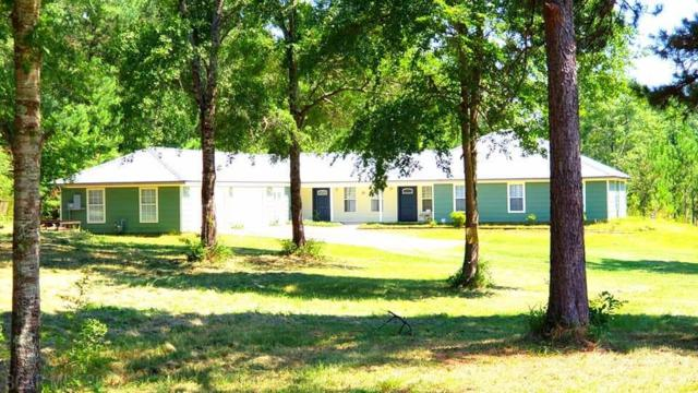 12280 County Road 138, Bay Minette, AL 36507 (MLS #270561) :: The Premiere Team