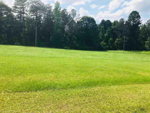 0 Whitetail Run, Chatom, AL 36518 (MLS #270586) :: Gulf Coast Experts Real Estate Team
