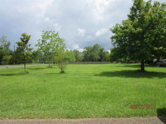 0 County Road 55, Silverhill, AL 36576 (MLS #270926) :: Jason Will Real Estate