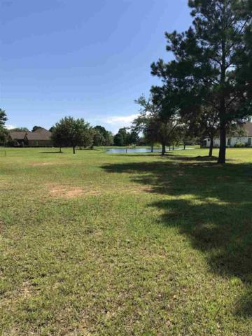 32 Olde Park Rd, Gulf Shores, AL 36542 (MLS #271030) :: The Kim and Brian Team at RE/MAX Paradise