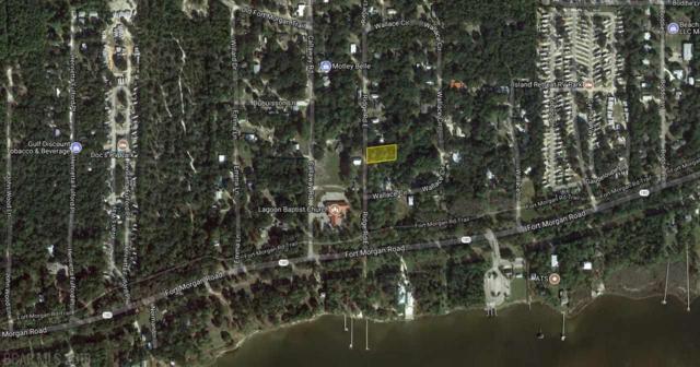 0 E Ridge Road, Gulf Shores, AL 36542 (MLS #271069) :: Karen Rose Real Estate