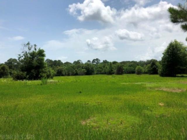 0 Fox Lane, Lillian, AL 36549 (MLS #271311) :: Ashurst & Niemeyer Real Estate