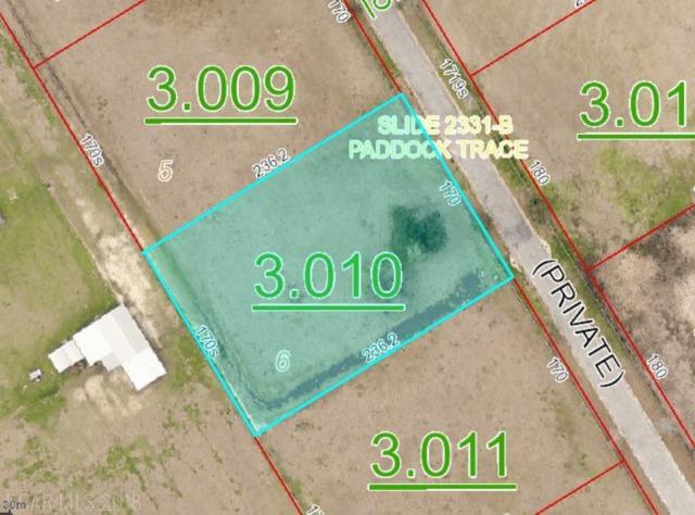 6 Horses-N-Hounds, Foley, AL 36535 (MLS #271316) :: Ashurst & Niemeyer Real Estate