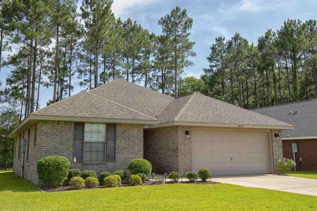 24436 Raynagua Blvd, Loxley, AL 36551 (MLS #271321) :: Elite Real Estate Solutions