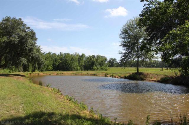ooo S County Road 62, Robertsdale, AL 36567 (MLS #271341) :: Elite Real Estate Solutions