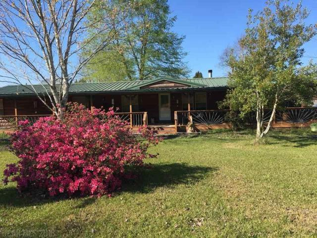 23461 Oasis Blvd, Robertsdale, AL 36567 (MLS #271746) :: Elite Real Estate Solutions