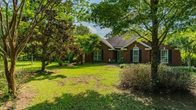 24610 Gabriella Lane, Loxley, AL 36551 (MLS #272038) :: Gulf Coast Experts Real Estate Team