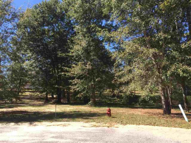 0 Turning Leaf Drive, Loxley, AL 36551 (MLS #272480) :: The Premiere Team