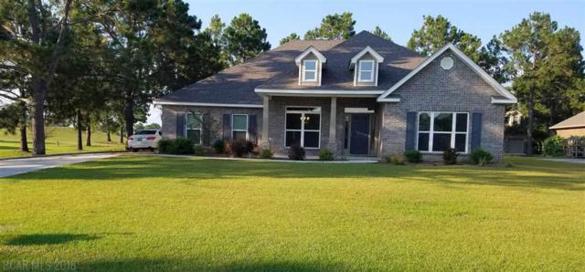 9525 Lakeview Drive, Foley, AL 36535 (MLS #272549) :: Elite Real Estate Solutions