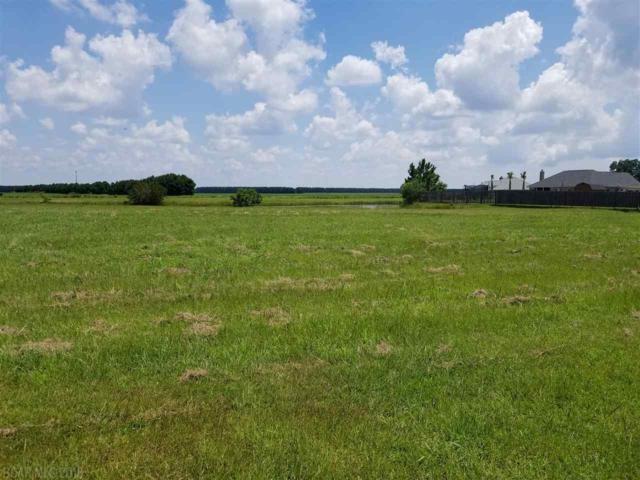 0 Bridgewater Drive, Theodore, AL 36582 (MLS #272738) :: Elite Real Estate Solutions