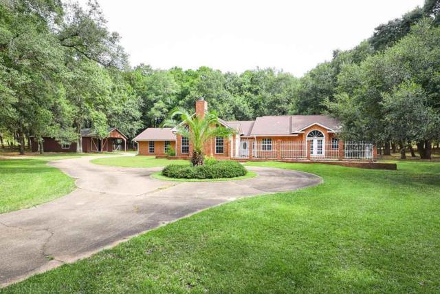 13131 Highway 98, Magnolia Springs, AL 36555 (MLS #273458) :: Elite Real Estate Solutions