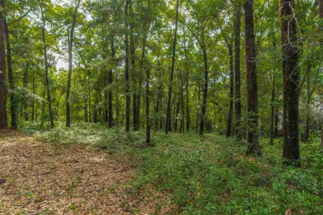 22853 Clearwater Circle, Montrose, AL 36532 (MLS #273822) :: Gulf Coast Experts Real Estate Team