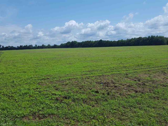 2 Lewis Rd, Milton, FL 32570 (MLS #273934) :: Gulf Coast Experts Real Estate Team