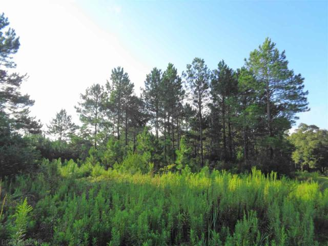 0 Cowpen Creek Road, Atmore, AL 36502 (MLS #274092) :: Gulf Coast Experts Real Estate Team