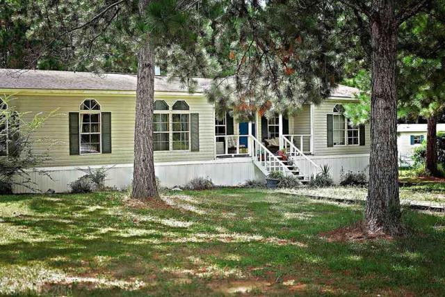 8632 Wilmer Georgetown Road, Wilmer, AL 36587 (MLS #274094) :: Elite Real Estate Solutions