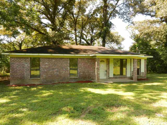 31400 Pearson Ln, Robertsdale, AL 36567 (MLS #274103) :: Bellator Real Estate & Development