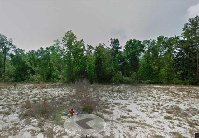 Ph 1 Lot 51 Cool Springs Drive, Foley, AL 36535 (MLS #274230) :: Gulf Coast Experts Real Estate Team