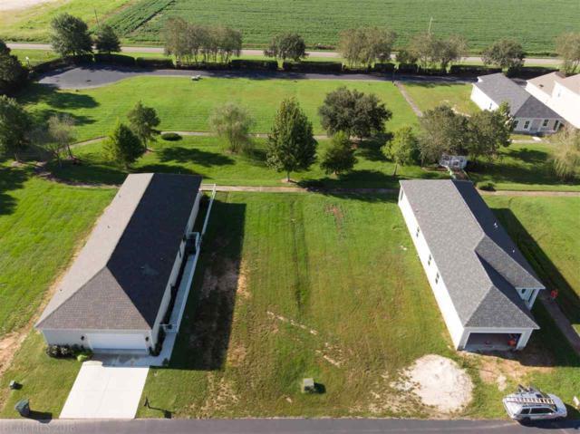 Lot 183 Sunnybell Ln, Foley, AL 36535 (MLS #274296) :: Elite Real Estate Solutions